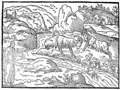 Vision of the Ram and Goat