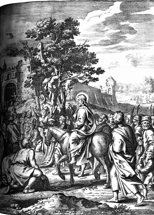 Triumphas Entry and the Fig Tree