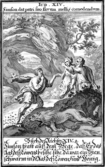 Samson Finds Honey in the Lion Carcass