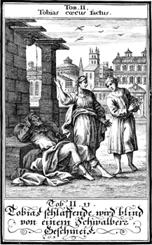 Anna and Tobit