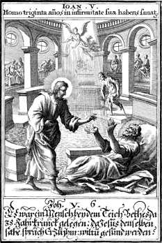 The Healed Man and the Pharisees