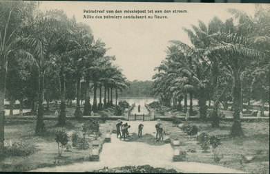 Allee des Palmiers Conduisant au Fleuve (Alley of Palm Trees Leading to the River)