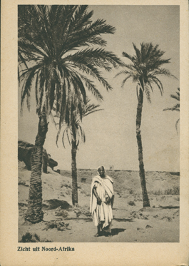 Zicht uit Noord Afrika (A View from North Africa)
